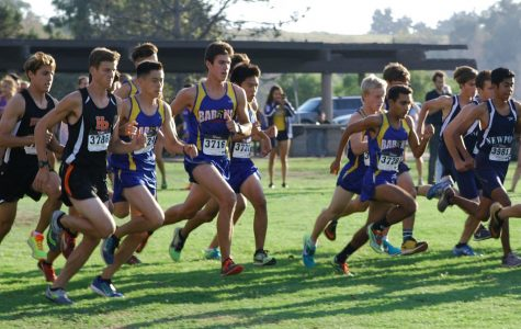 Cross Country Finals: XC Updates