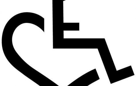 As hard as it is to accept, all will experience disability at one point in there lifetime, and only self-help and support will ease this pain. So show compassion to those facing physical disability; do not stigmatize a hardship that one day you too will face.
